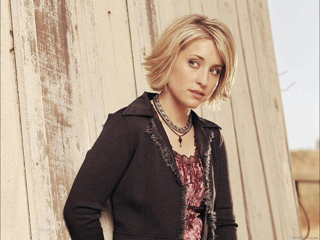Allison Mack Wallpaper 1024x768