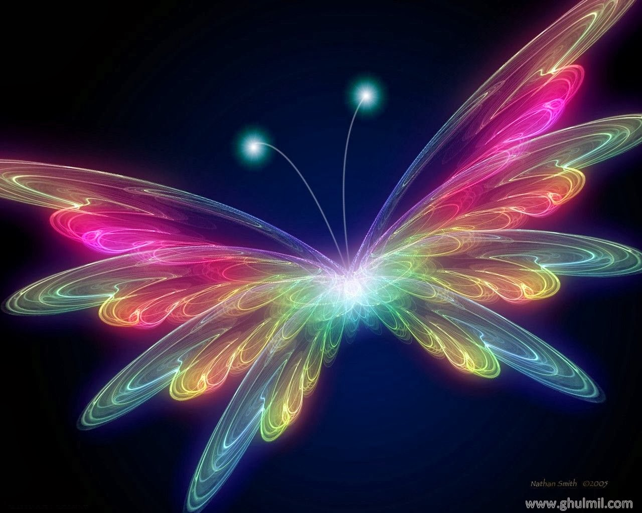 for get live butterfly wallpaper and make this live 1280x1024