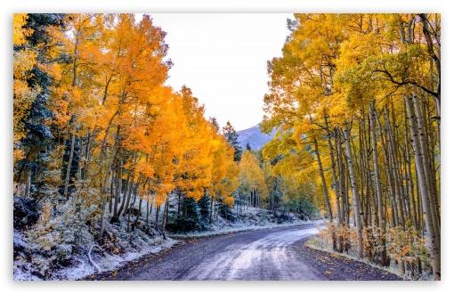 fall winter wallpaper background