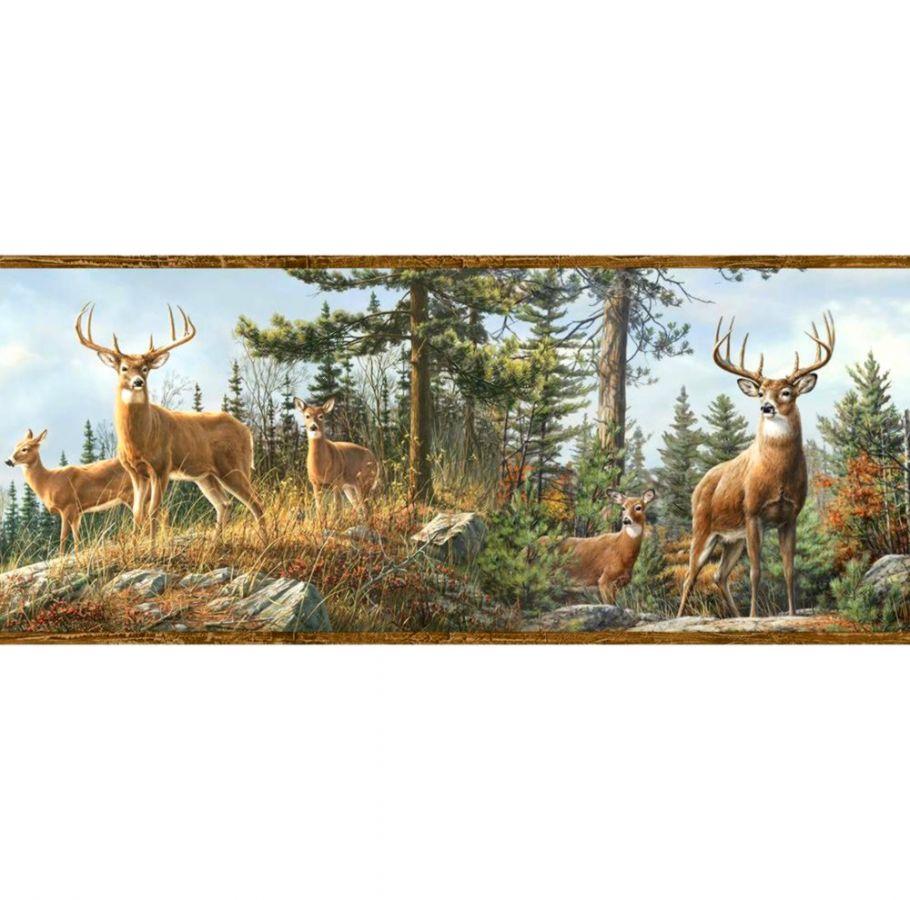 Whitetail Deer Wallpaper Border diariesofafashionfreak 910x900