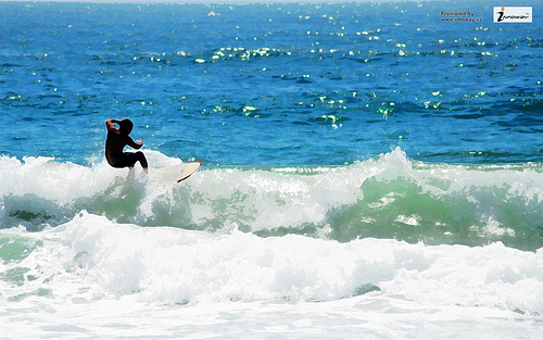 Surfing Wallpaper HD Widescreen Flickr   Photo Sharing 500x313