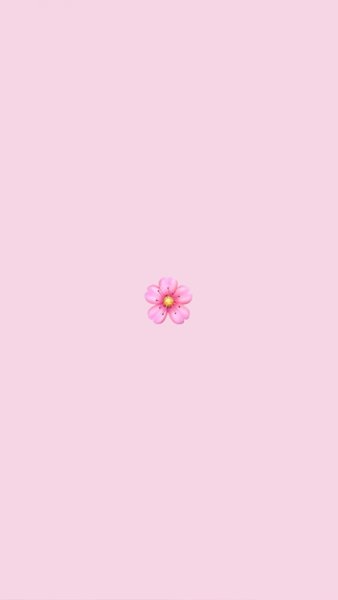 cute wallpapers lockscreens VSCO 1136x2017