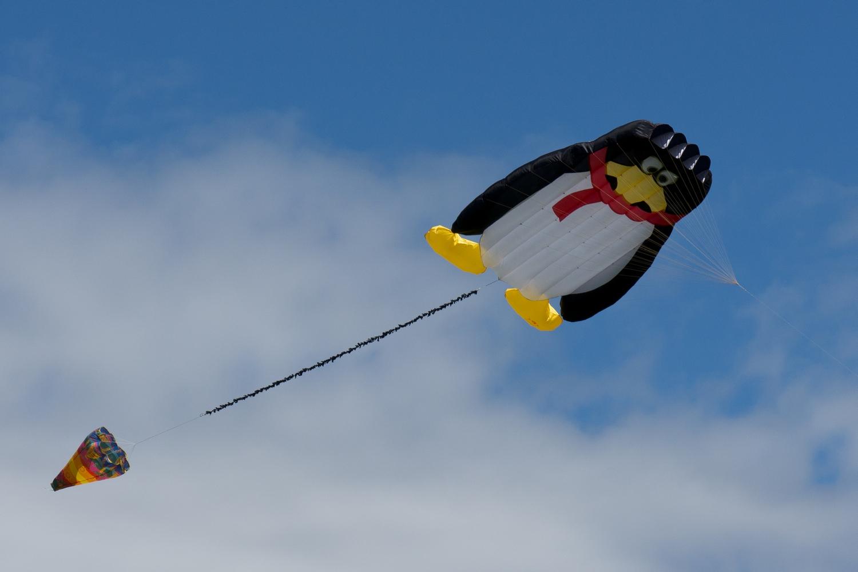kites flying kites kites in line kites in sky kites canada kites 1500x1000