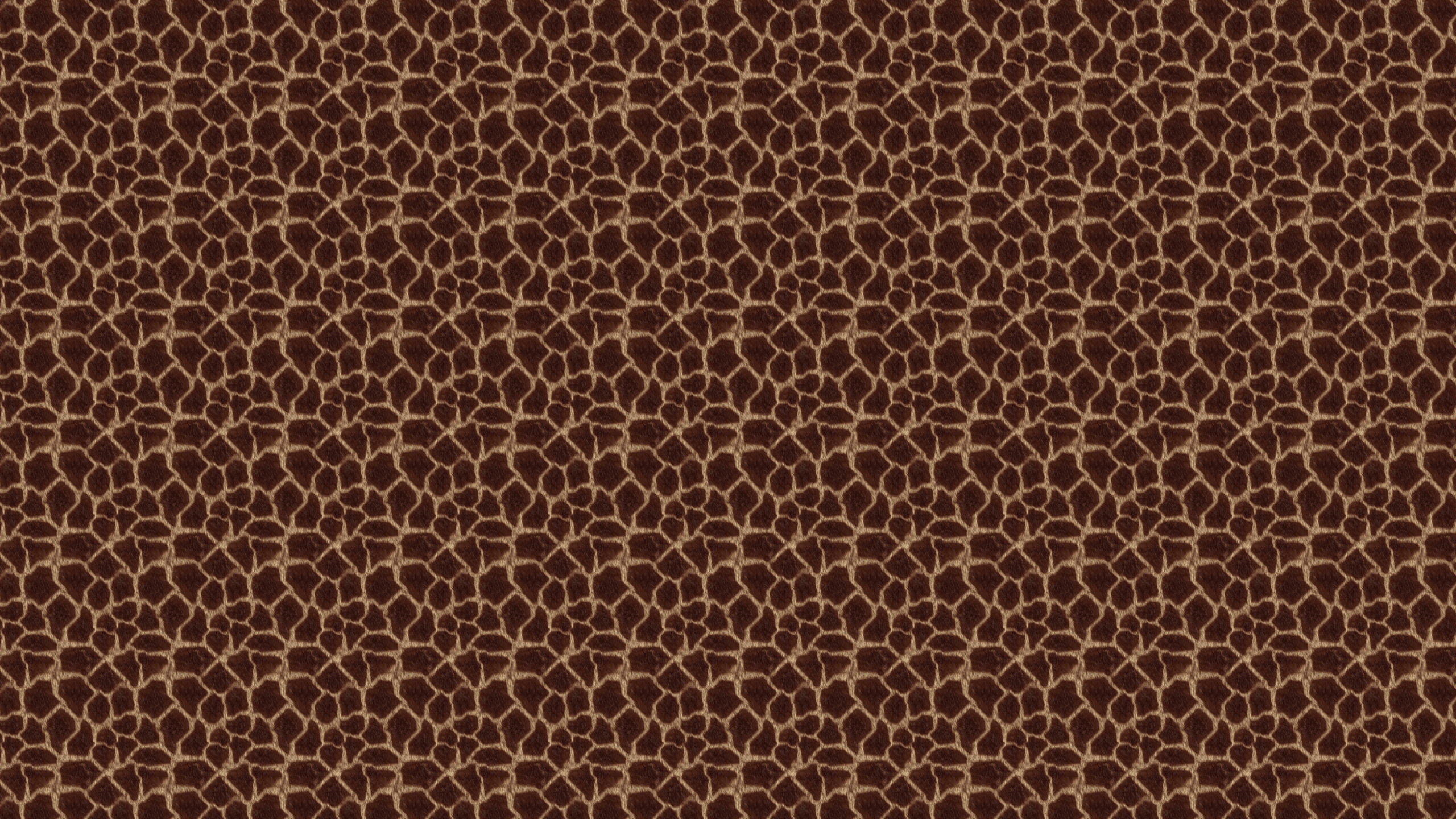 Animal Print Desktop Wallpaper is easy Just save the wallpaper 2560x1440