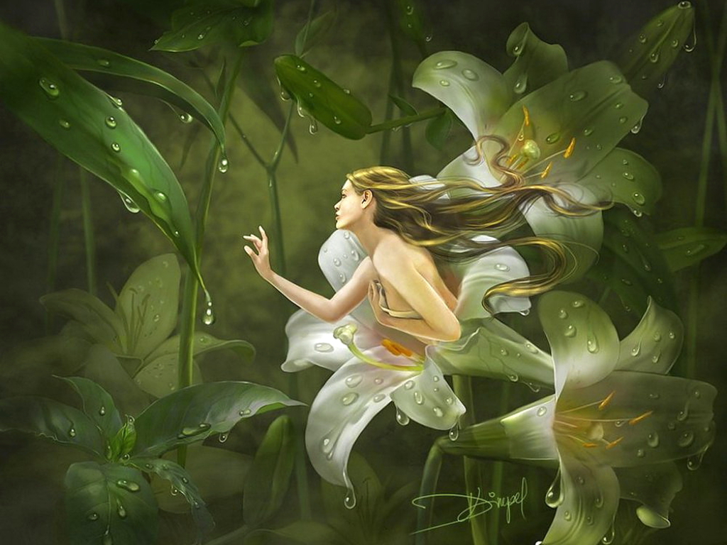 Free Fairy Wallpaper - WallpaperSafari