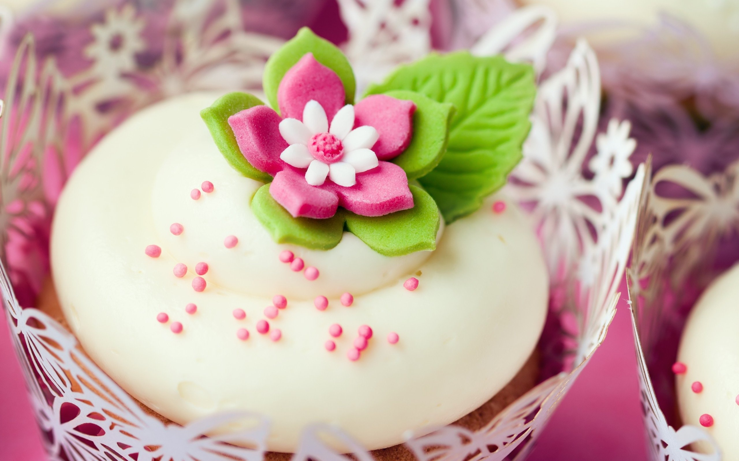 Cupcake Wallpaper HD wallpaper background 2560x1600