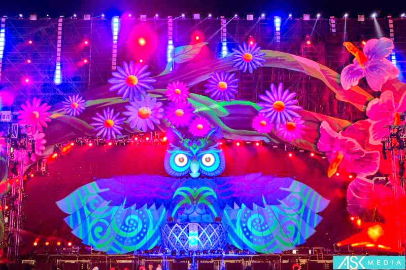 electric daisy carnival wallpaper wallpapersafari