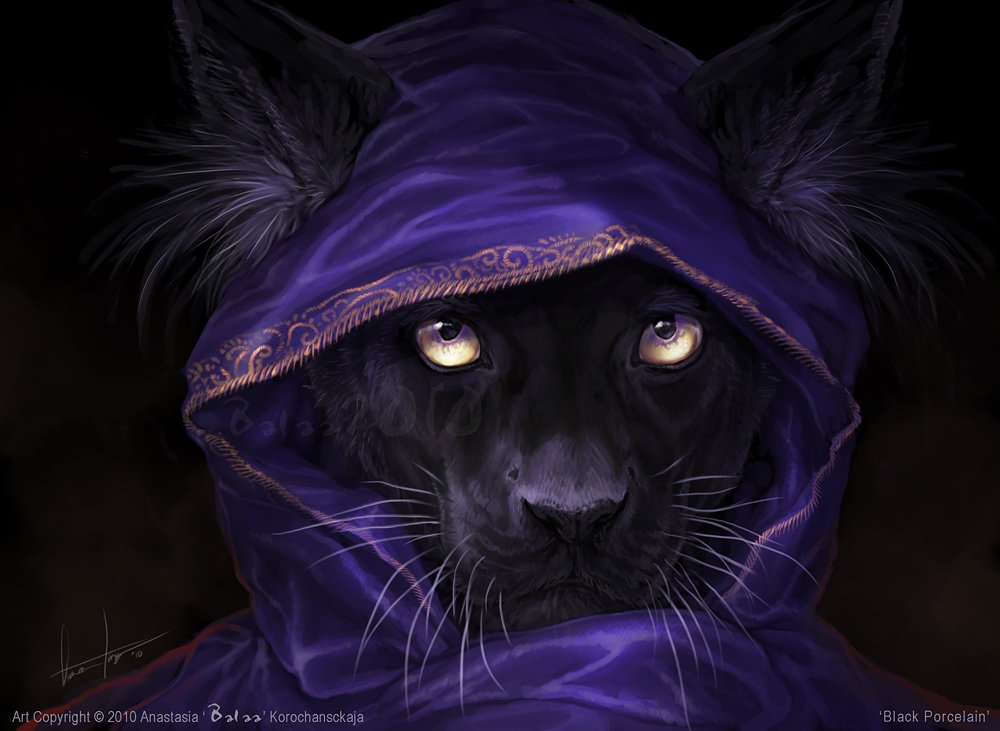 c2190 purple mage leopard furry high resolution HD Wallpaper of Wild 1000x731