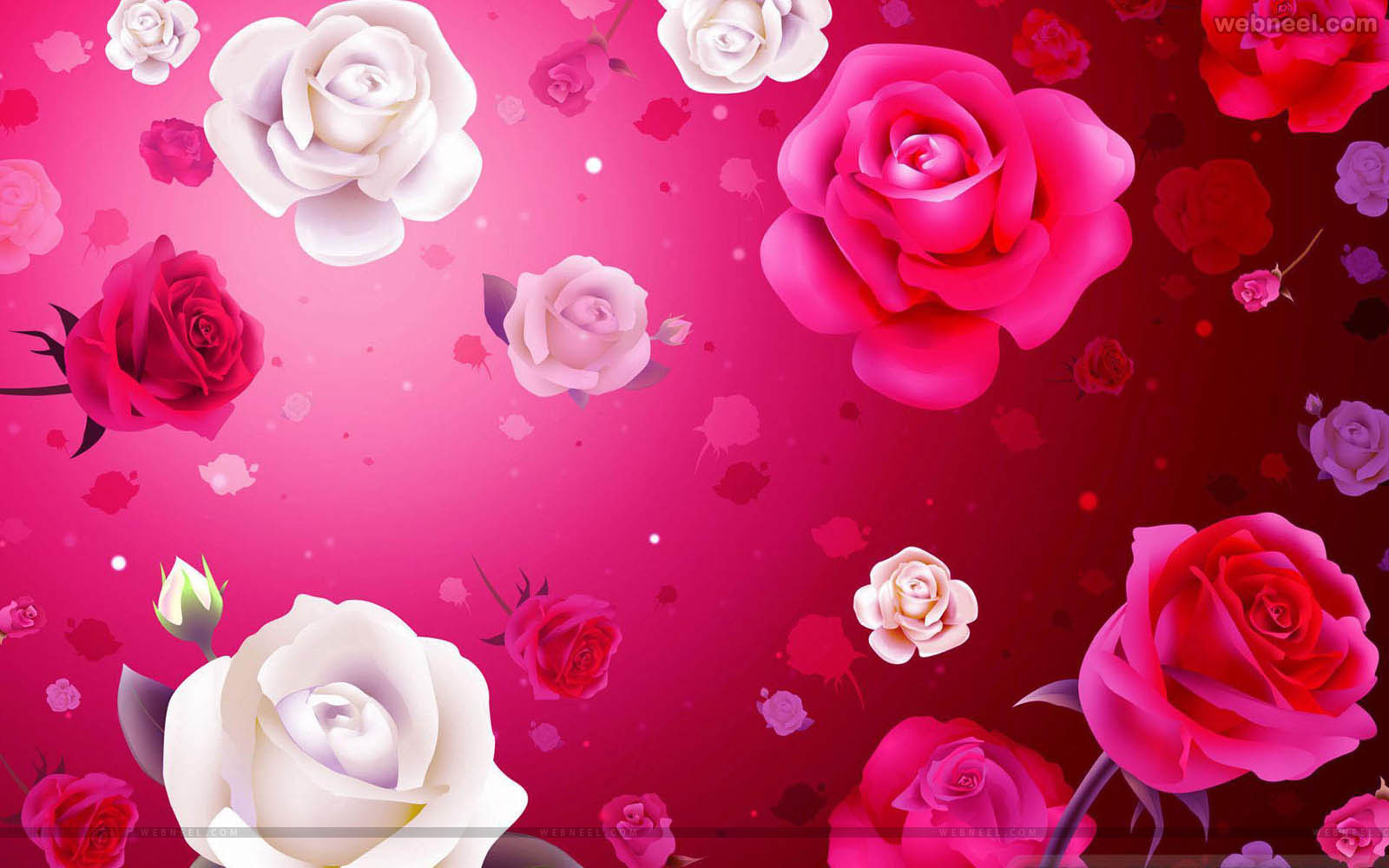 Free Download Valentine Day Wallpaper 13 View All 1600x1000 For