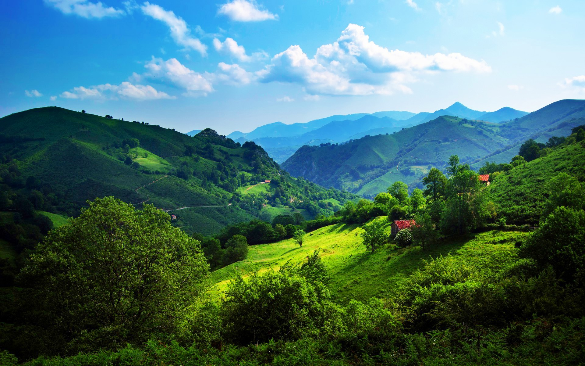 Green Hills Wallpaper