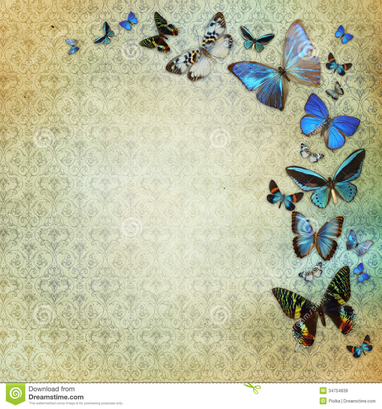 Vintage Butterfly Background Vintage Shabby Chic Background 1300x1390
