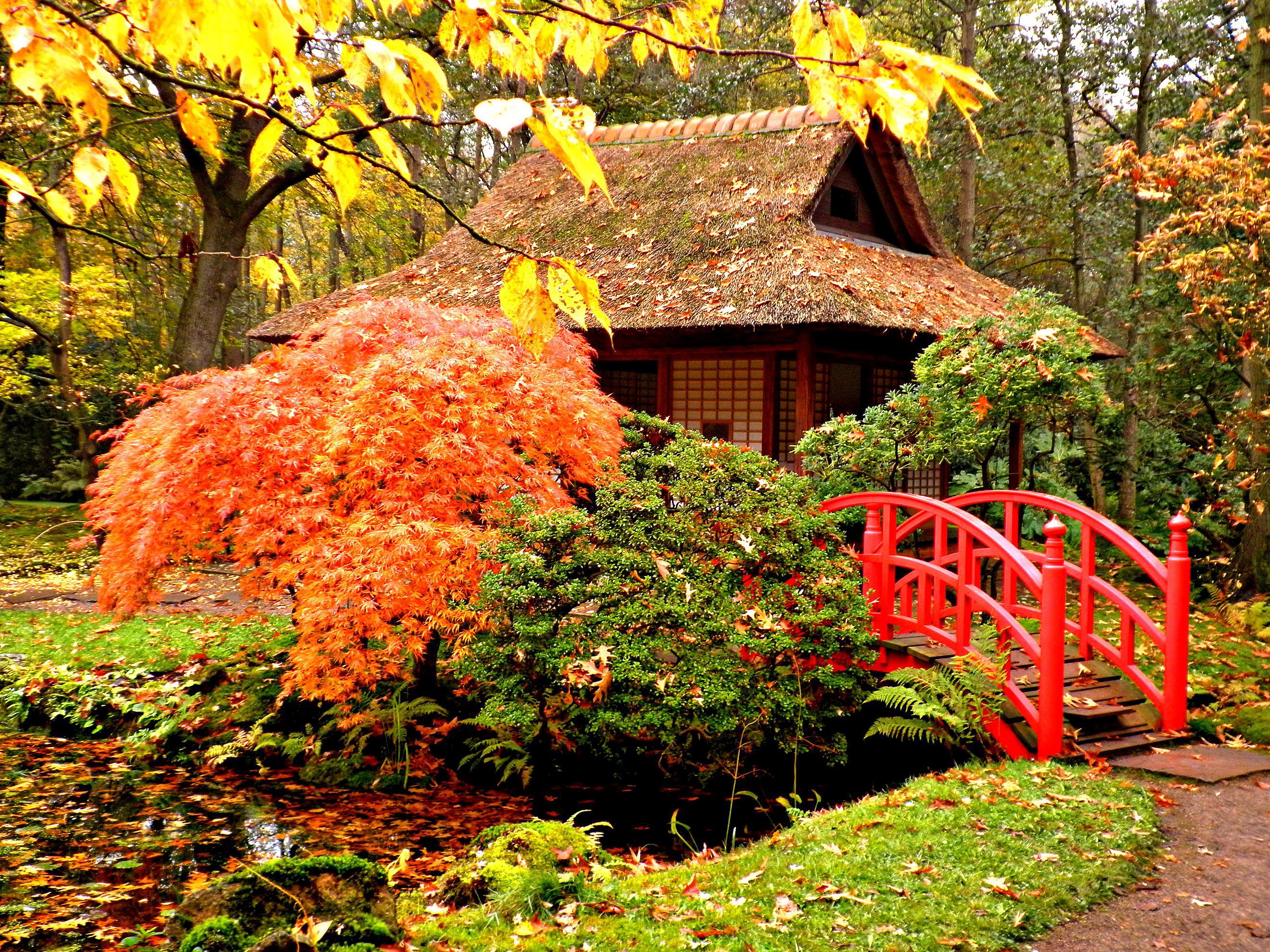 The Japanese Garden Desktop Background wallpapers HD   573338 2640x1980