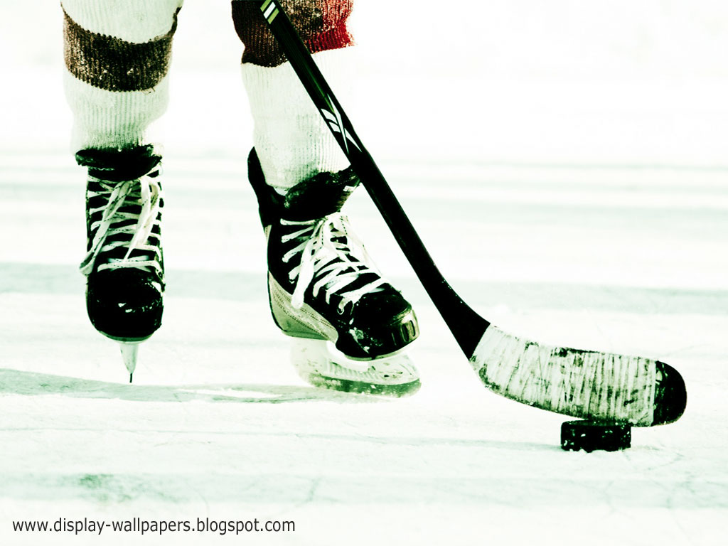 Hockey Wallpaper to your computer laptop mobile lcd or led Desktop 1024x768