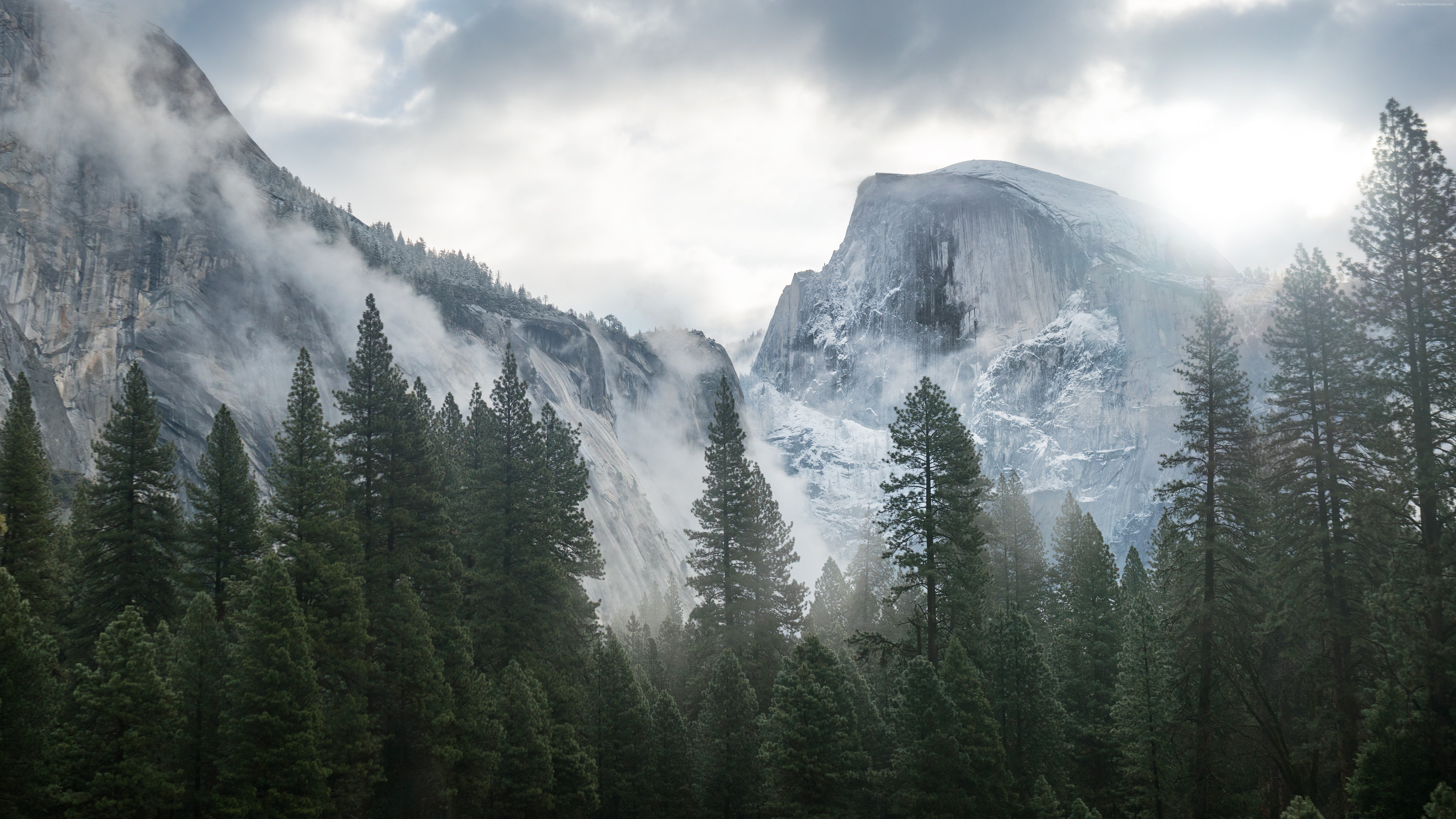 Forest Yosemite 5k wallpapers forest OSX apple mountains 5932x3337