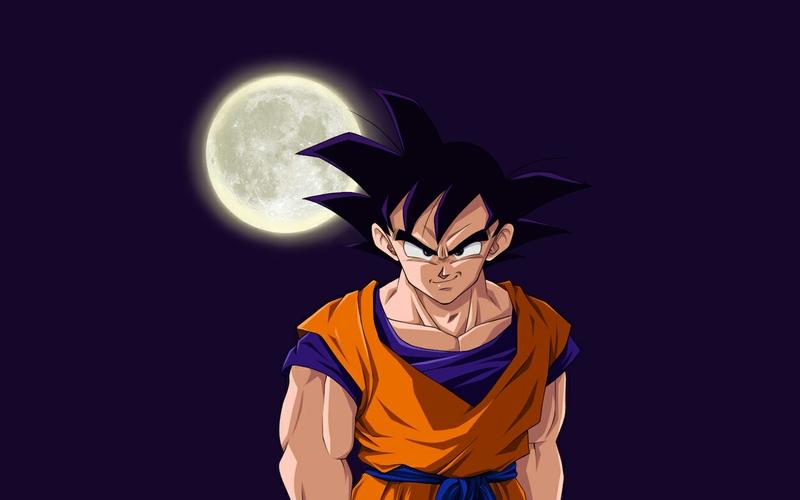 Goku Dragon Ball Z HD Desktop 300x187 800x500