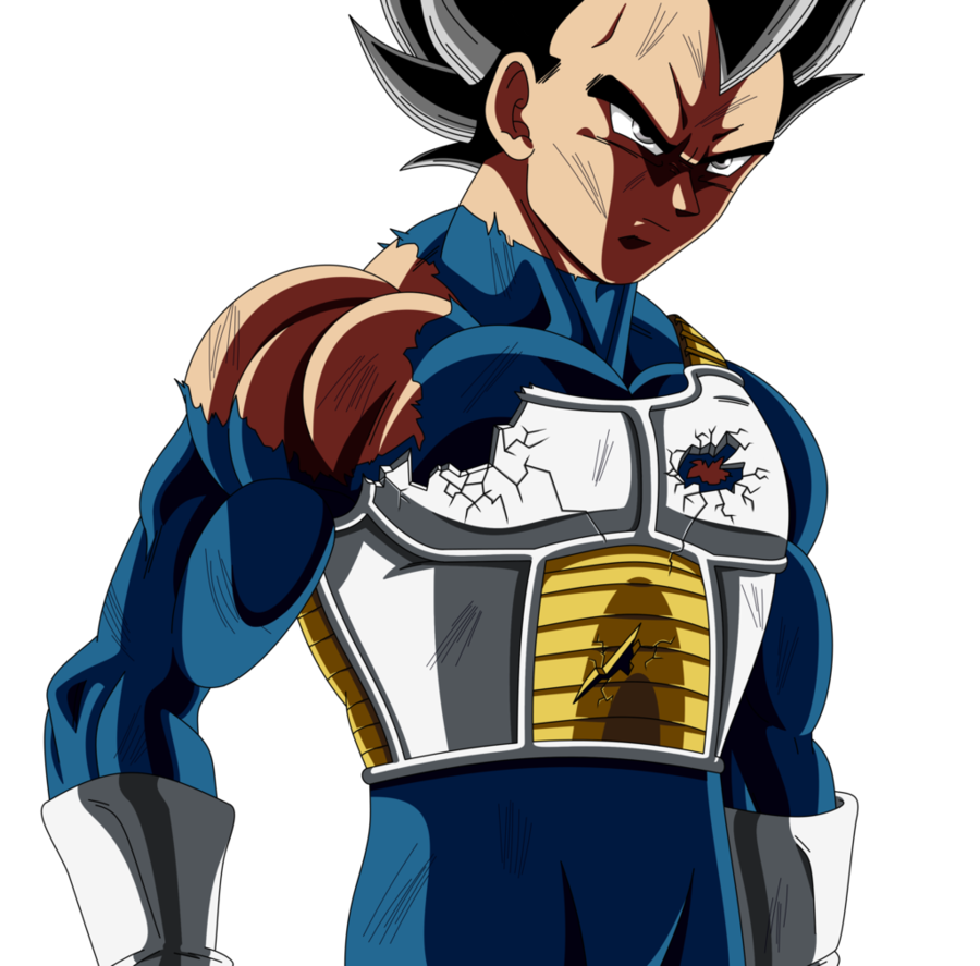 Ultra Instinct Vegeta by Mitchell1406 900x887