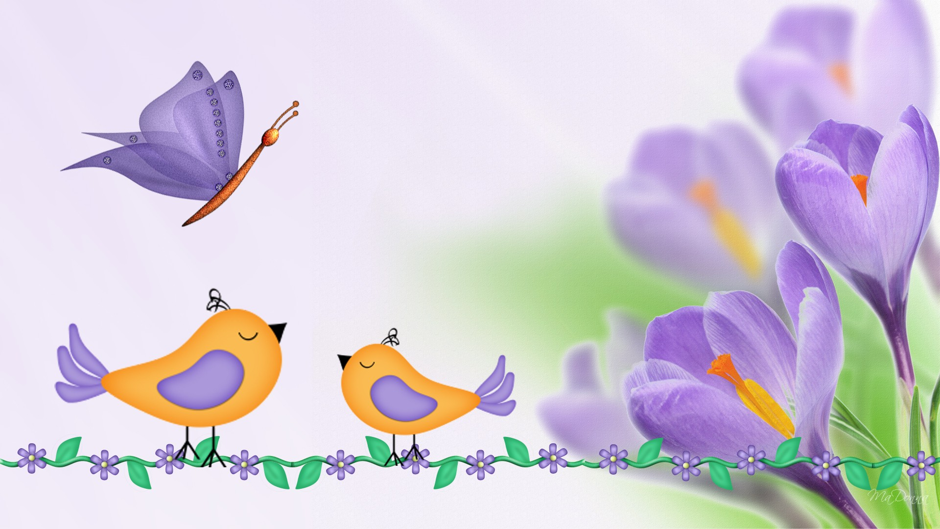 purple crocus birds and butterflyjpg 1920x1080