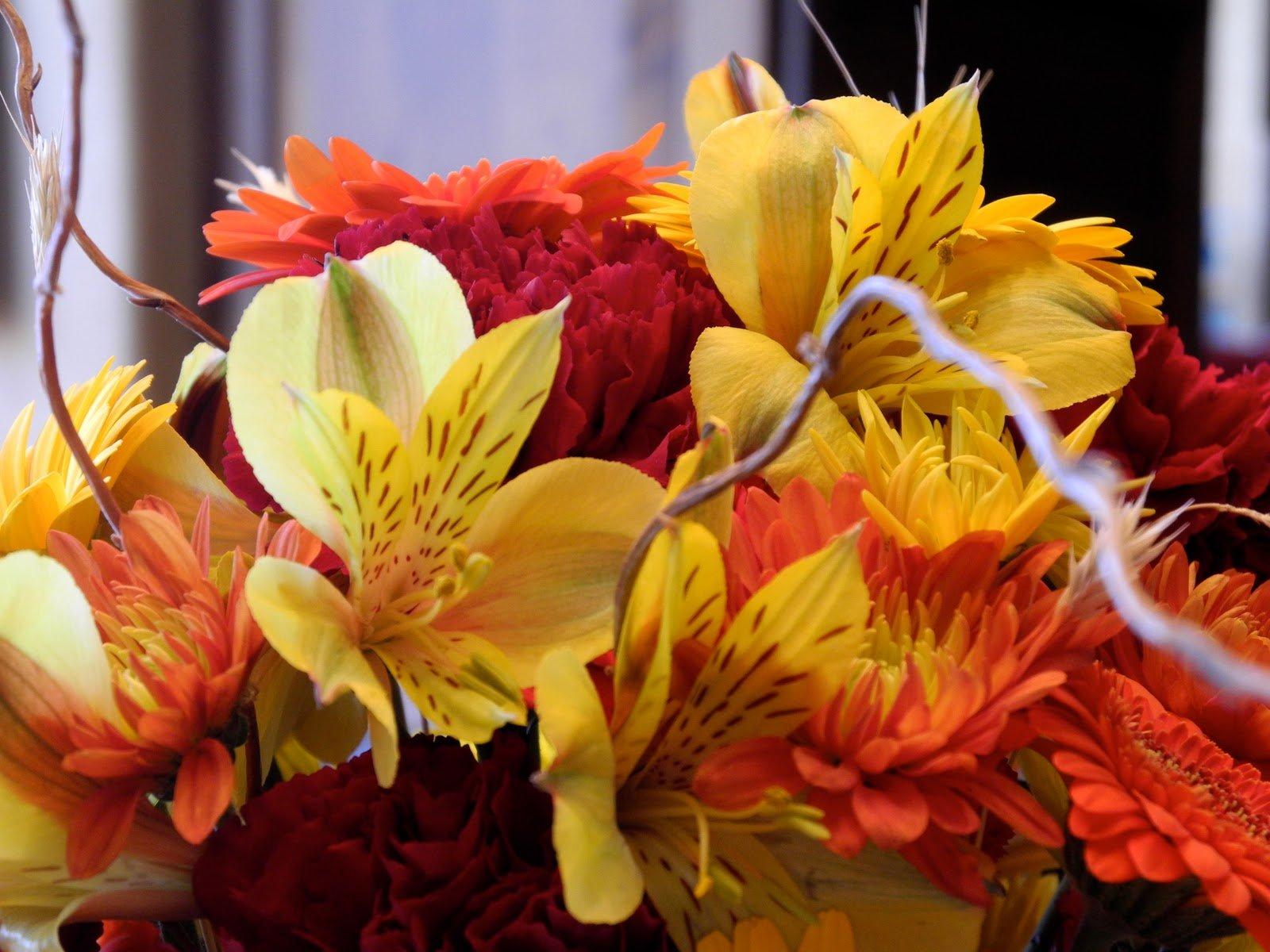The Flower Girl Blog fall flowers and a pumpkin 1600x1200