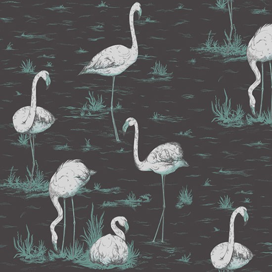 Free Download Cole Son Flamingos Wallpaper From Wallpaper