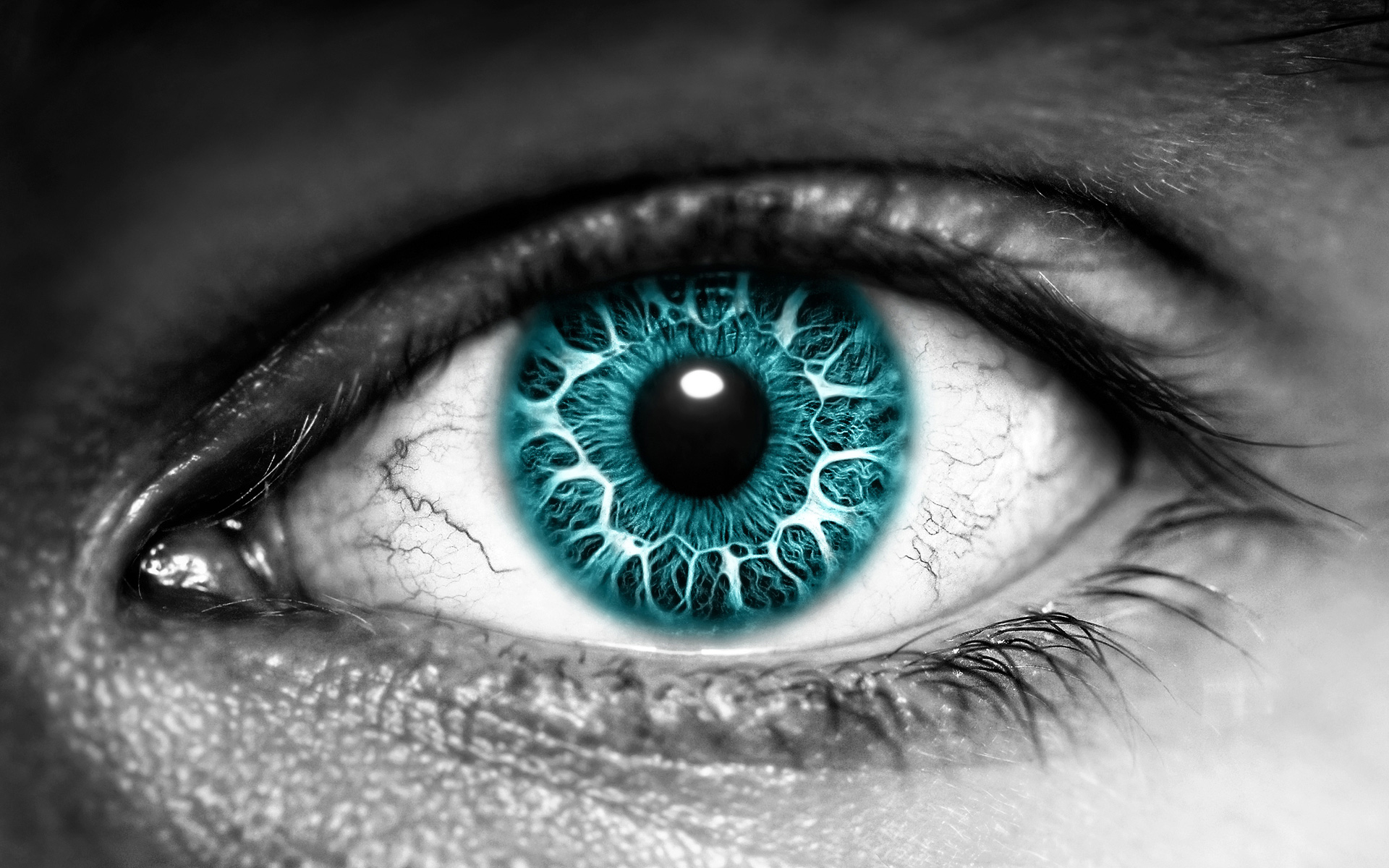The Eye Exclusive HD Wallpapers 135 1920x1200