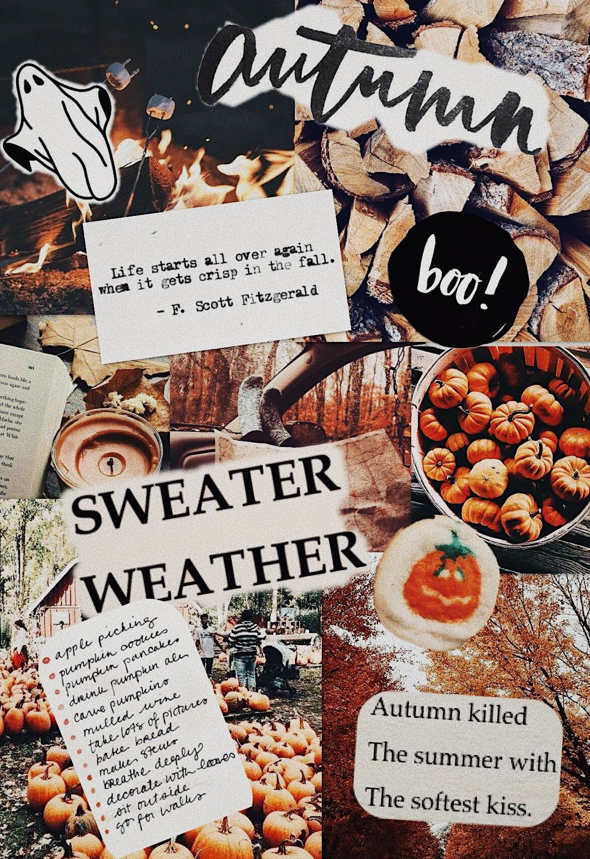 Fall Collage Wallpapers   Top Fall Collage Backgrounds 1170x1703