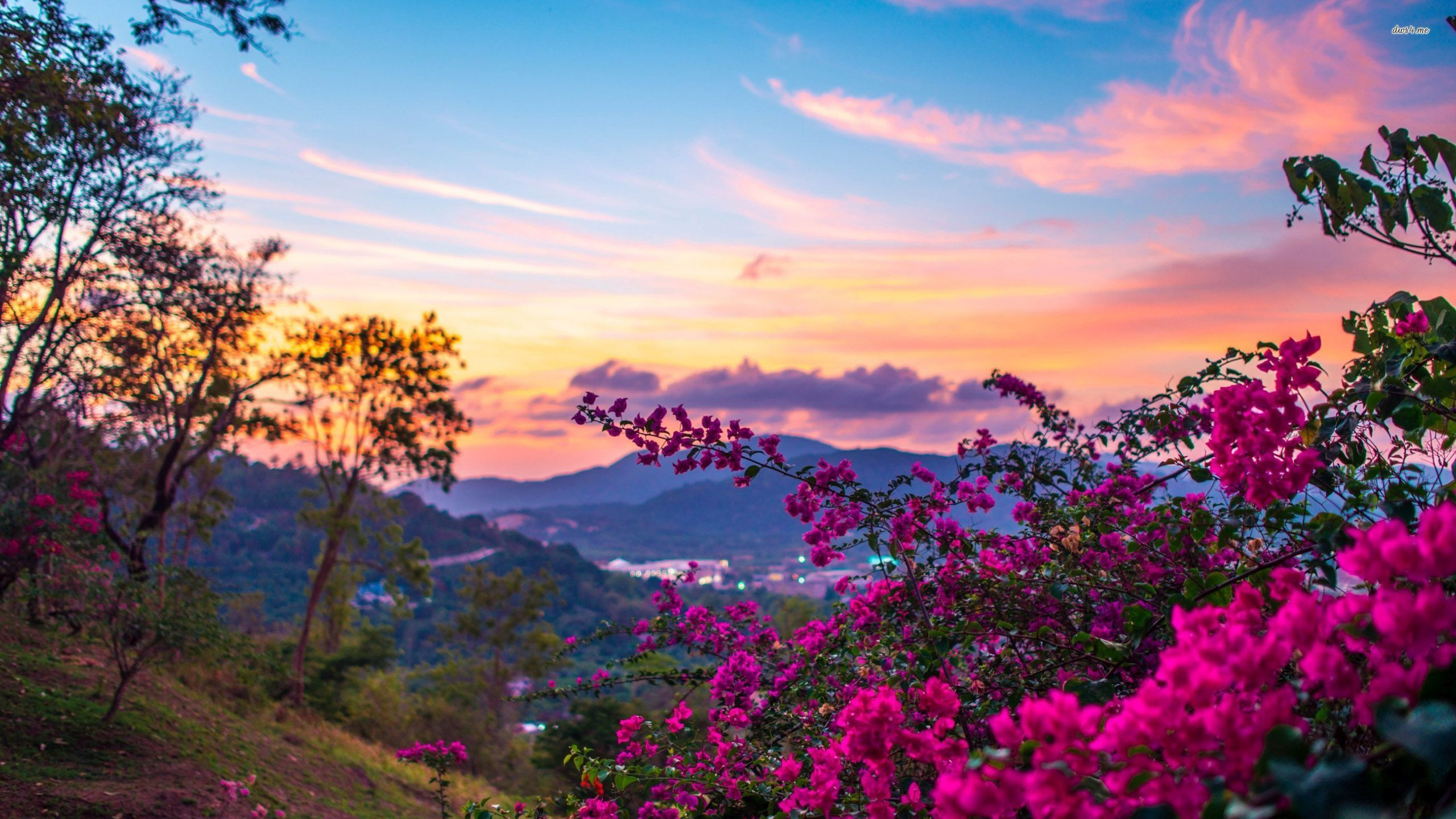 Beautiful Nature & Landscapes Wallpapers - Page 1