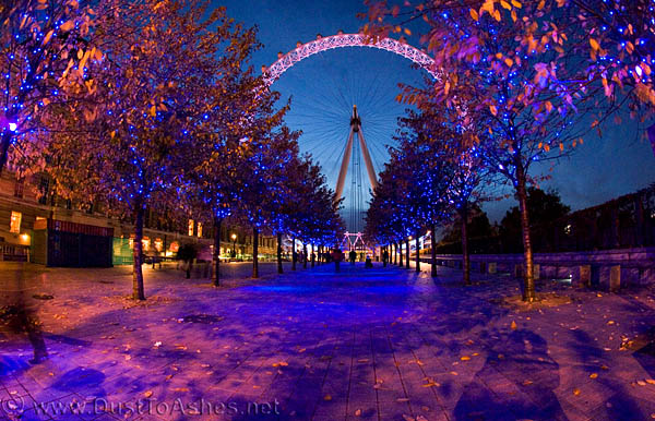 Christmas London Eye Wallpaper 600x386