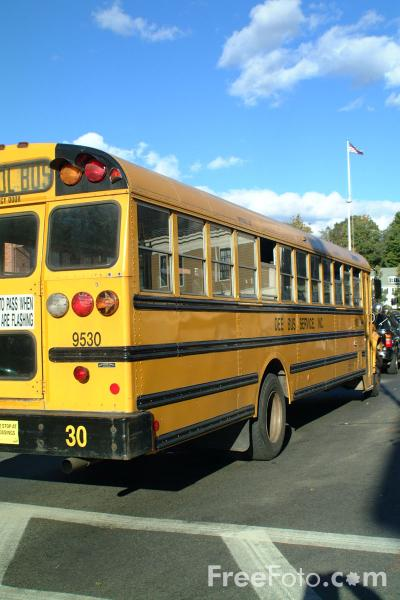 Yellow School Bus pictures use image 2030 02 51 by FreeFotocom 400x600