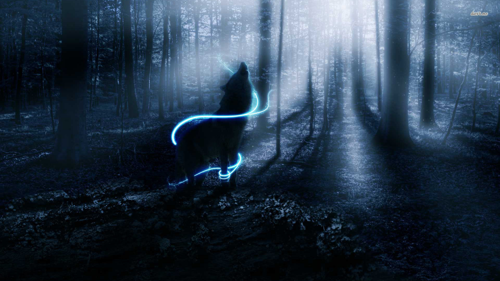 Wolf wallpaper   lobos wallpaper 32901744   fanpop 1920x1080