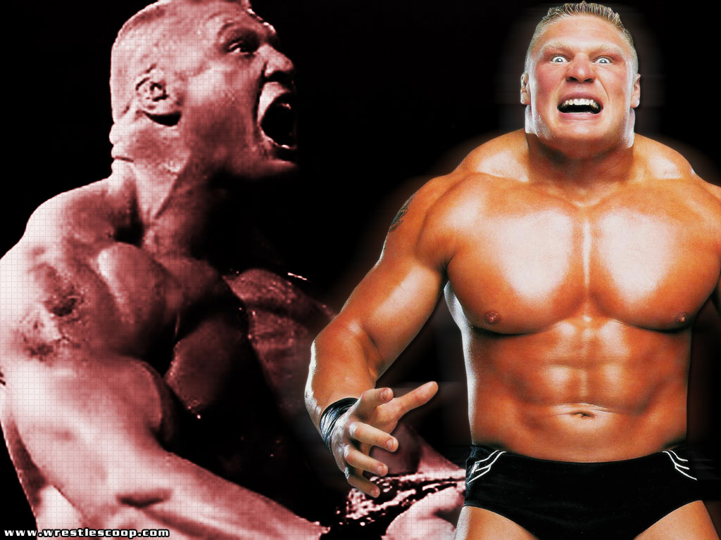 If Sylvia is booking gigs then expect Brock Lesnar to score the lead 1024x768