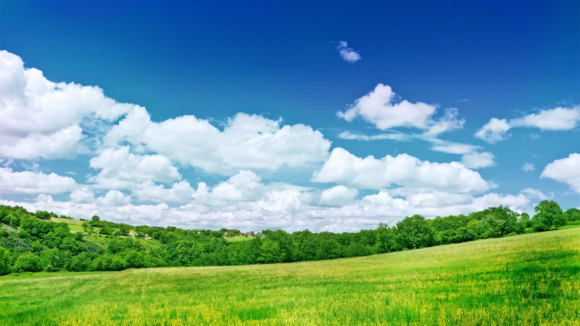 ... Grassland Scenery Backgrounds Widescreen and HD background Wallpaper