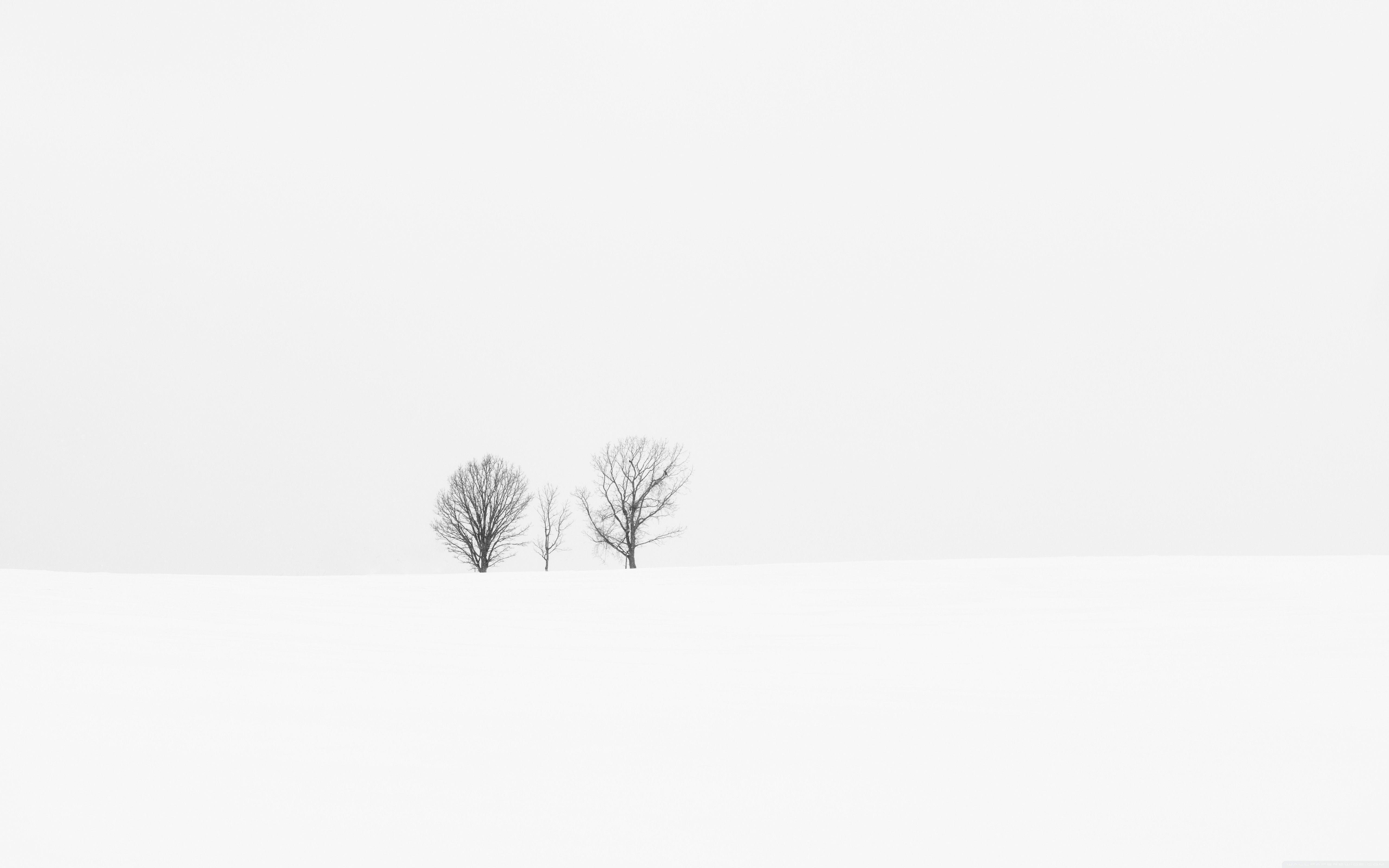 Free download White Minimalist Desktop Wallpapers Top White ...
