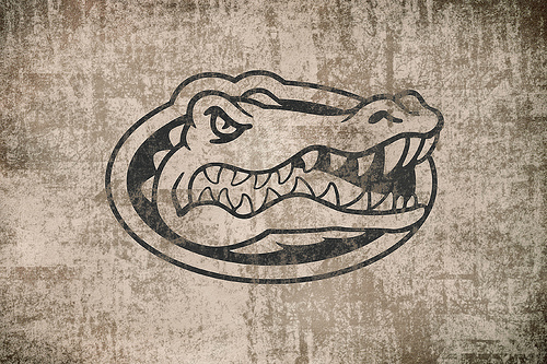 Vintage Florida Gators Wallpaper 01 Explore hieblingers p 500x333