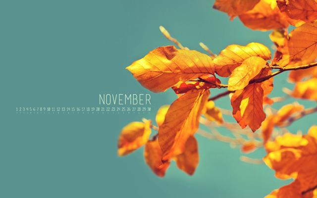 ... actualité, les couleurs de l'automne à l'honneur: November 2012