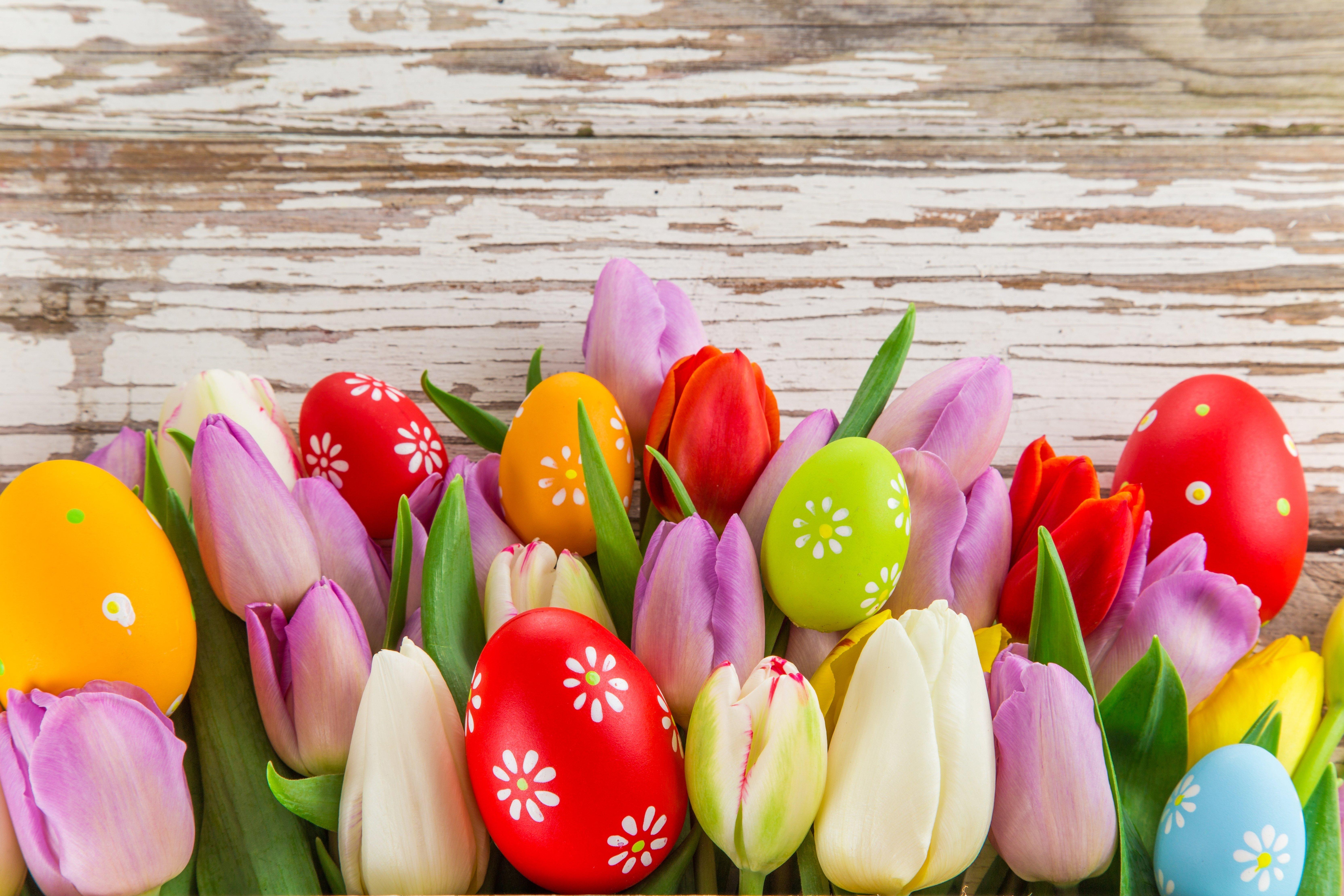 Free Download Beautiful Easter Desktop Wallpapers Wallpaper