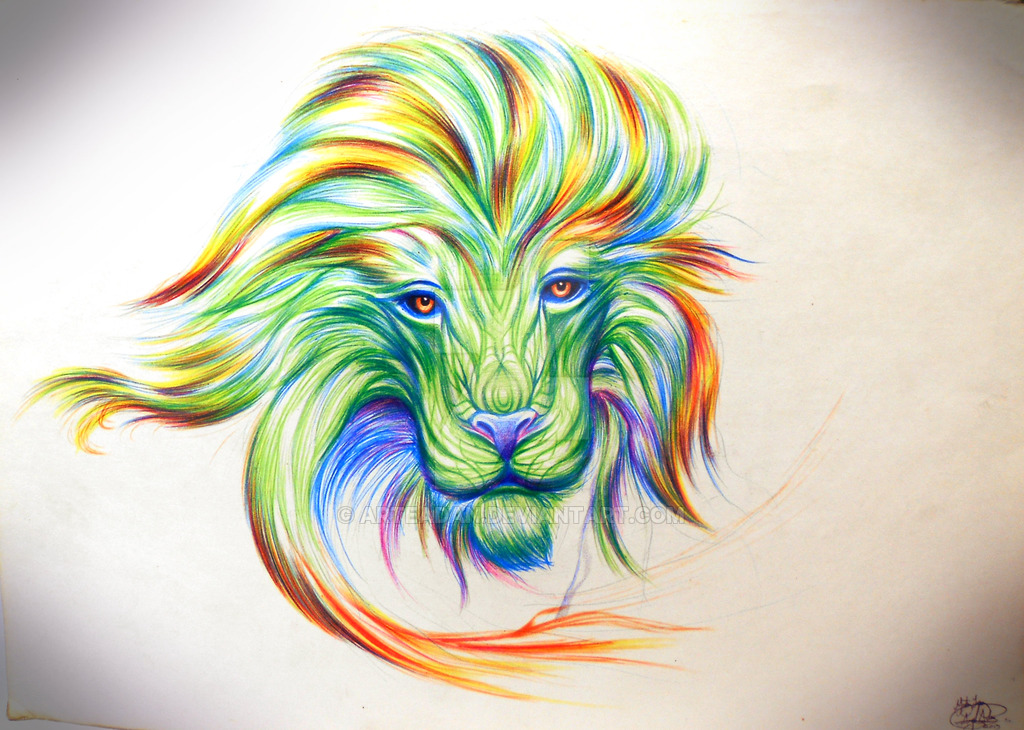 1024x730px Trippy Lion Wallpaper Wallpapersafari