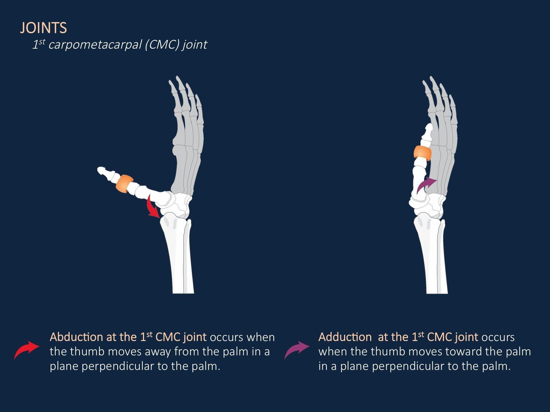 1st carpometacarpal CMC joint Case Background Joints AT1x 1920x1440