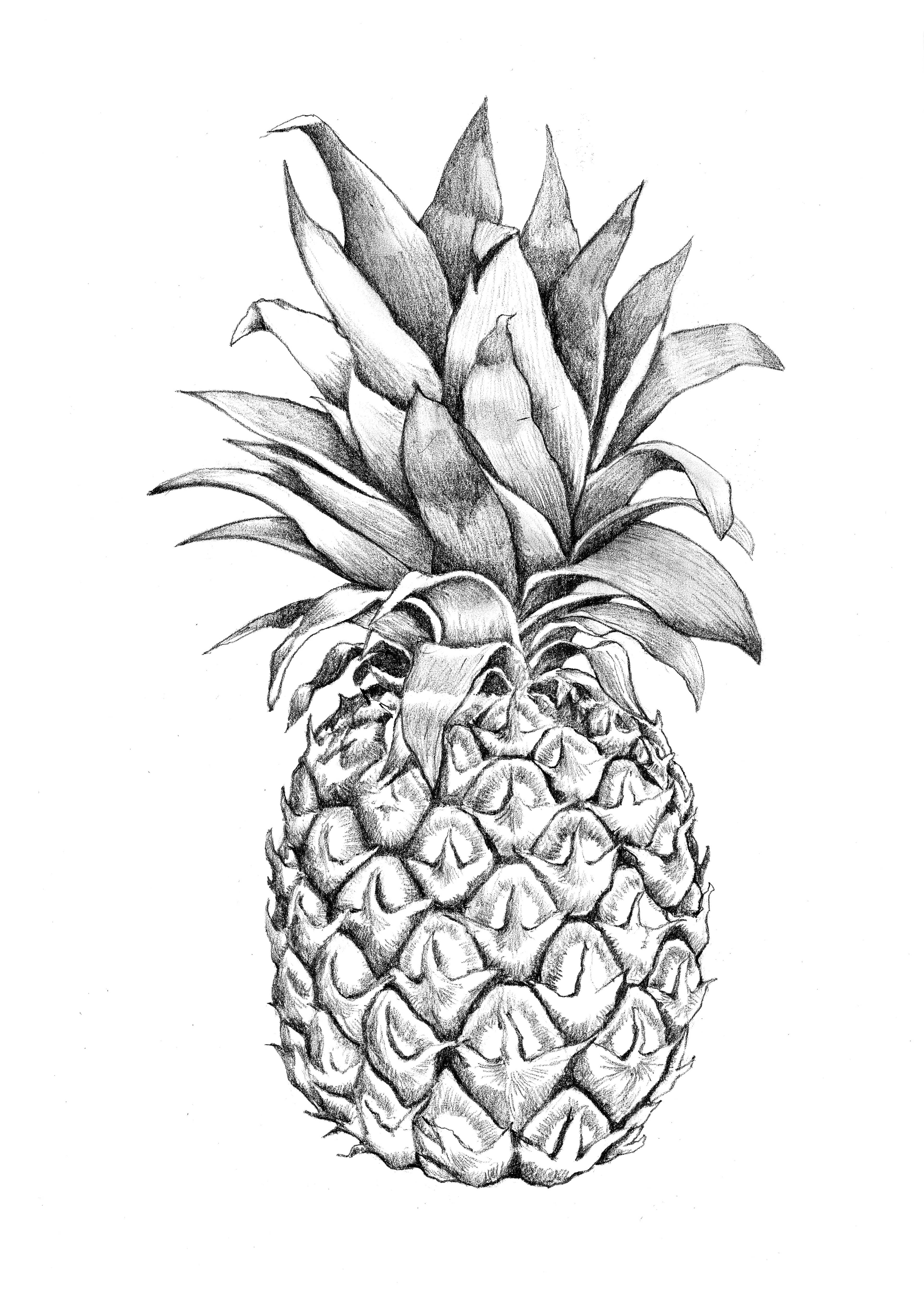 3543x5011px Black and White Pineapple Wallpaper ...
