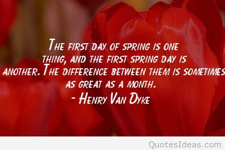 First day of spring quotes wallpapers and flowers photos 447x299