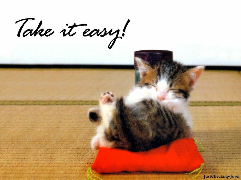 Funny Pictures With Sayings Funny Cat Sayings Funny Pictures 1024x768