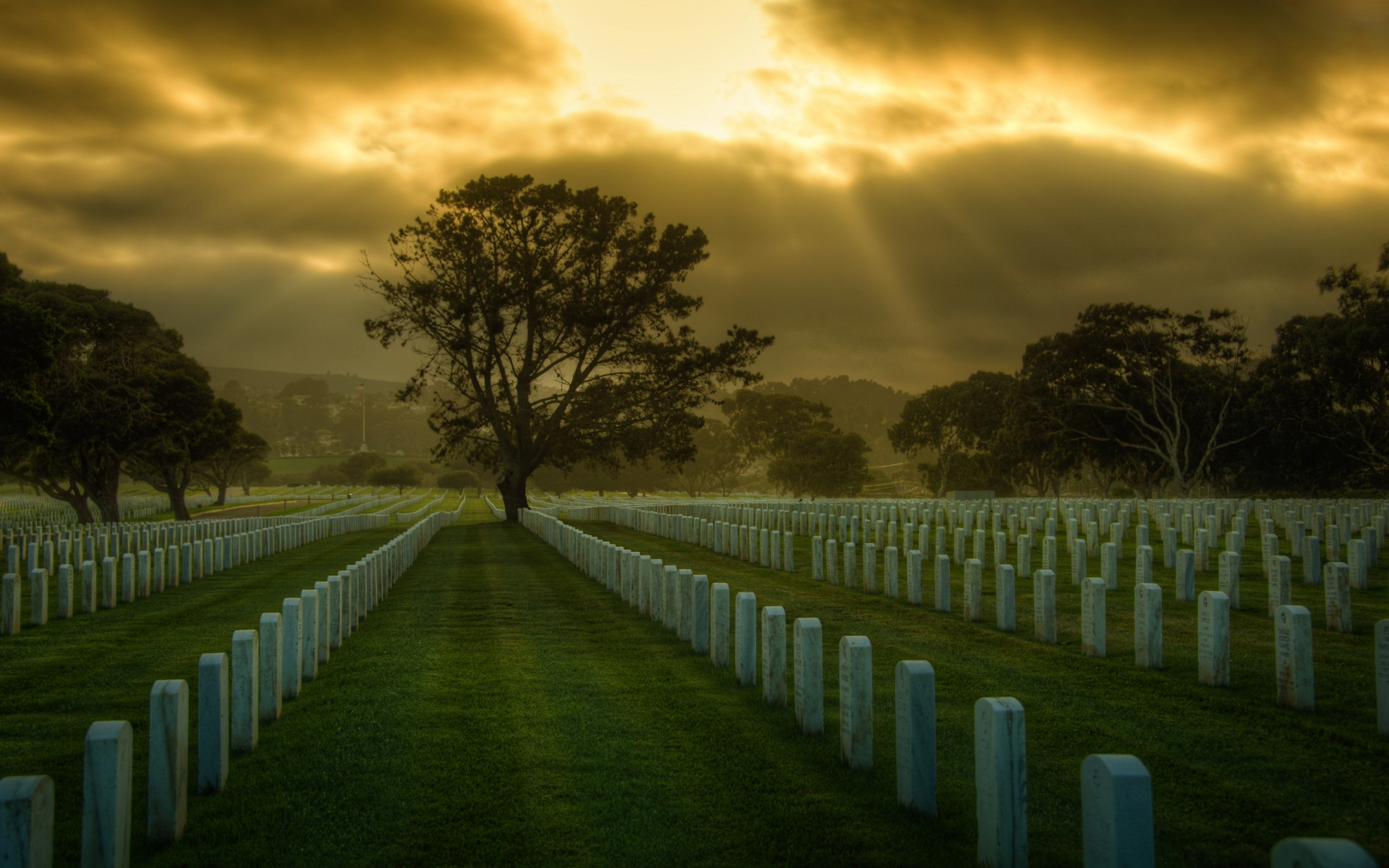 United States San Francisco cemetery USA military wallpaper background 1920x1200