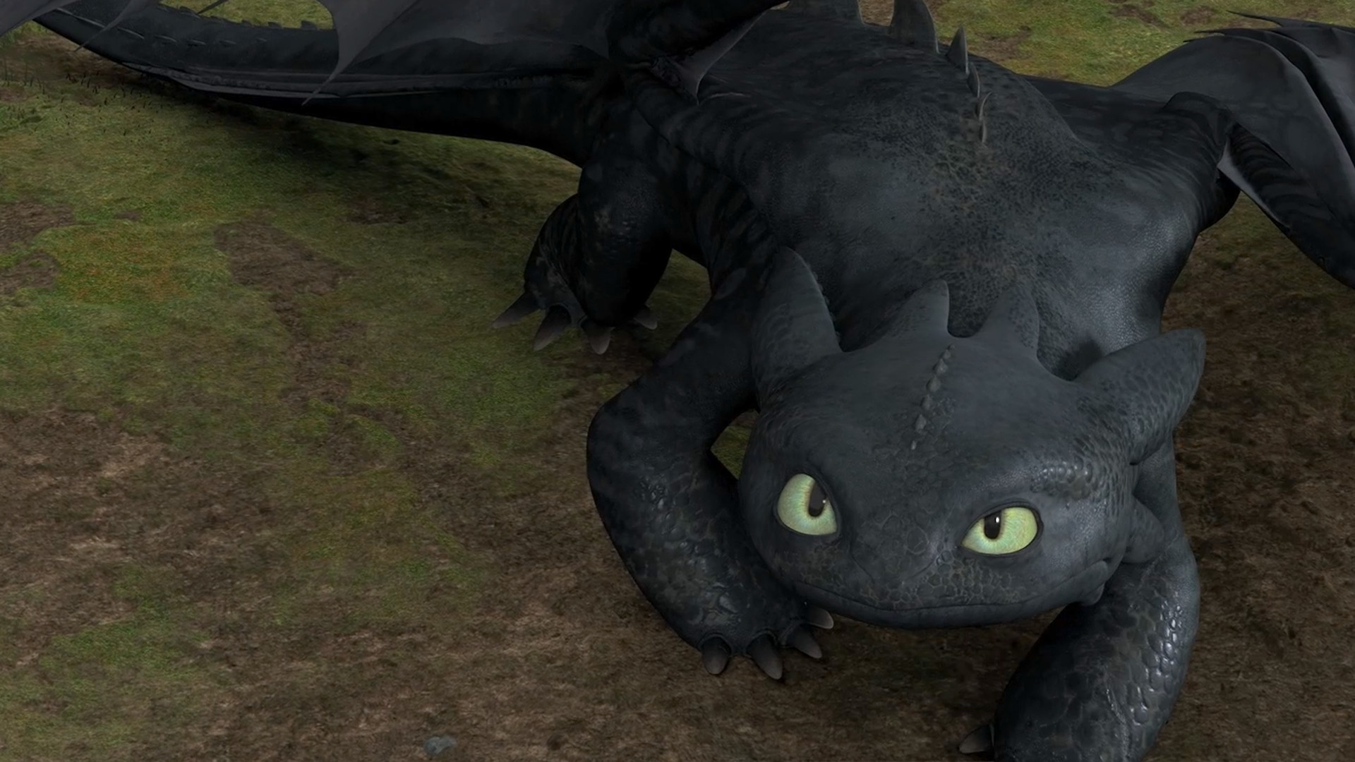 Toothless Dragon Wallpaper Images Pictures   Becuo 1920x1080