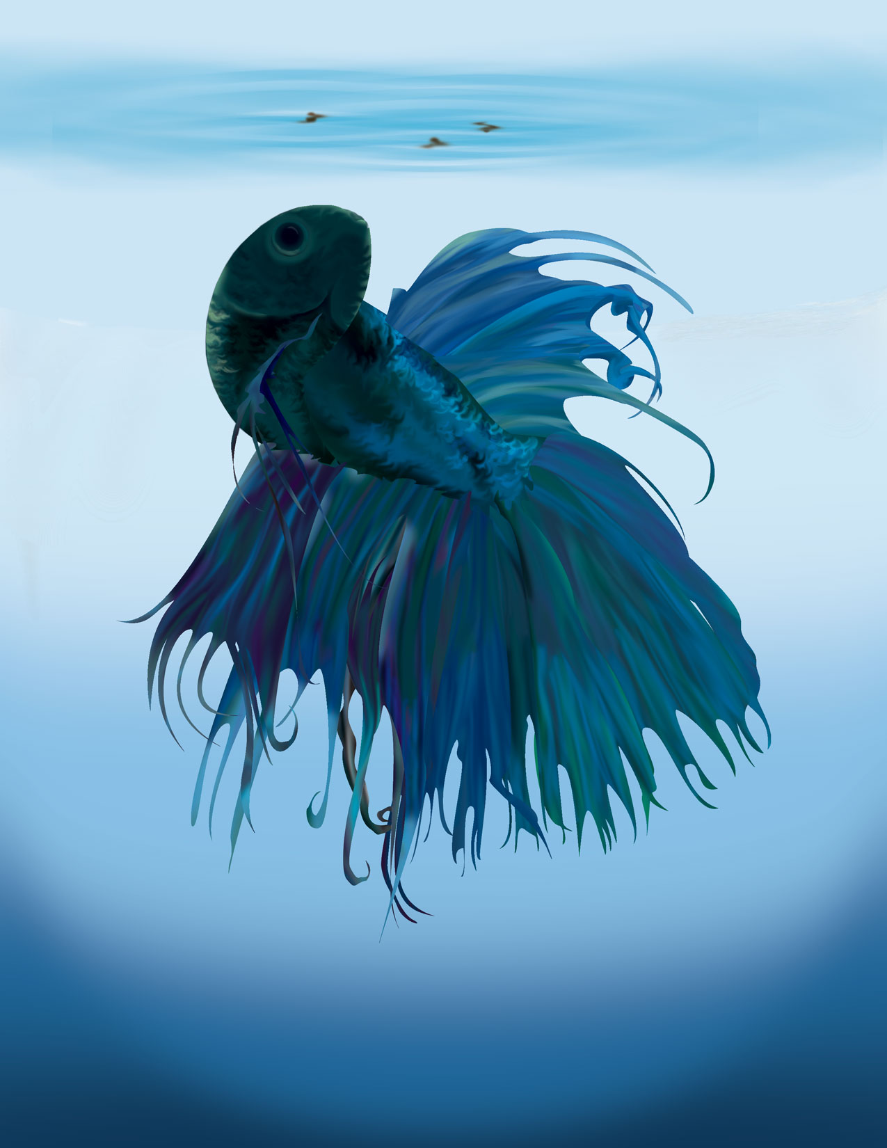 Cartoon Beta Fish Picture Wallpaper Pictures 1275x1650