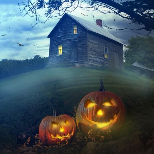 Haunted House 500x500