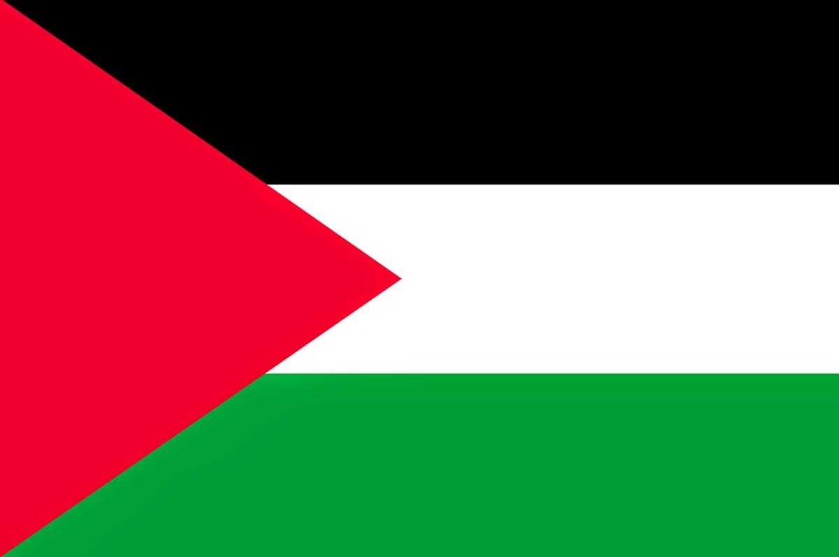 Palestine flag png hd pictures 3000x4515 px Png Vectors Photos 1200x797