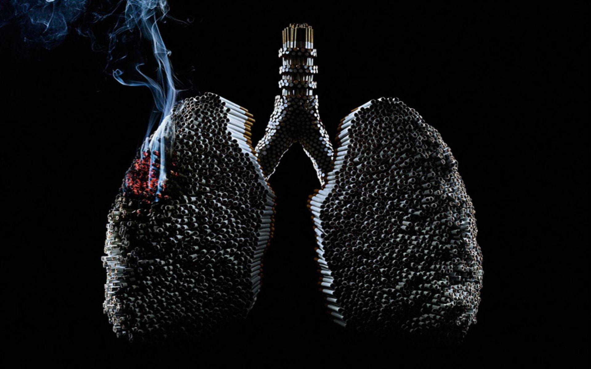 Lung cancer pictures for desktop and wallpaper   Picture for 1920x1200