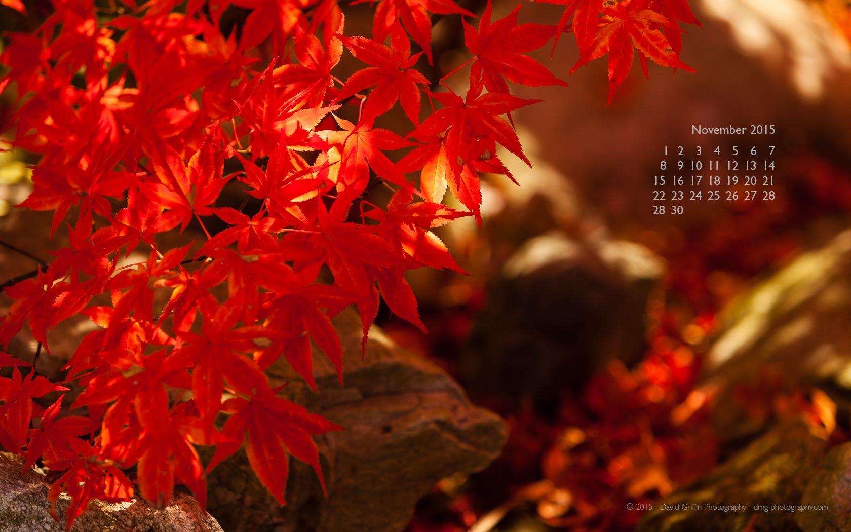 November 2015 Wallpaper David Griffin Photography 1680x1050