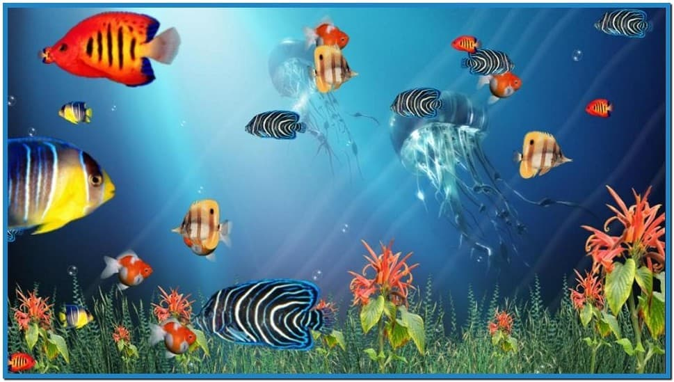 Moving Fish Wallpapers Aquarium Wallpa...