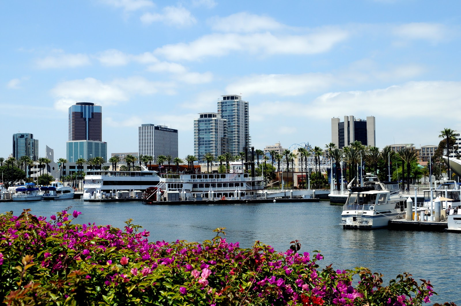 Long Beach California Wallpaper Wallpapersafari