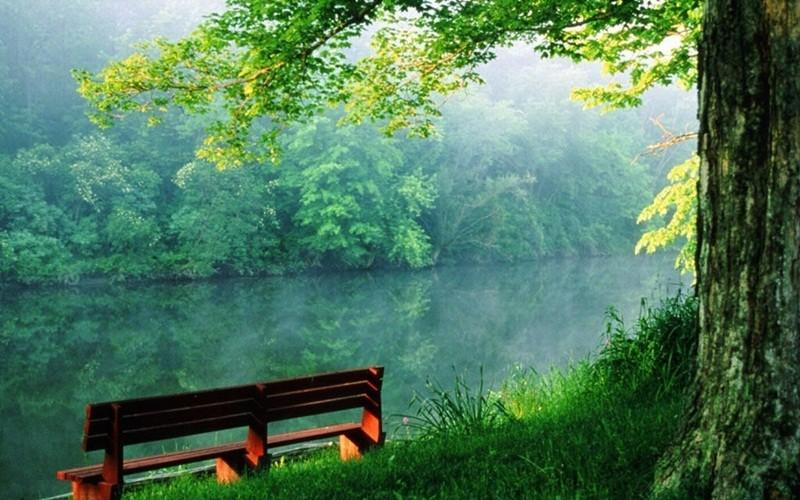 Free download Green Nature HD Wallpaper Android Apps on